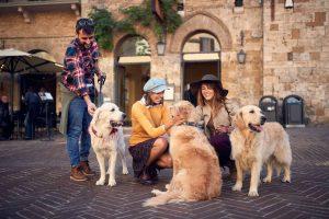 Med hunden i Toscana