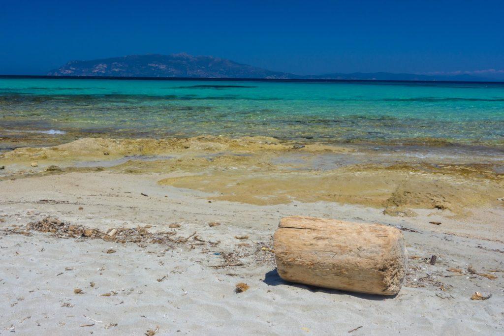 Isola Pianosa Isola d'Elba im Hintergrund