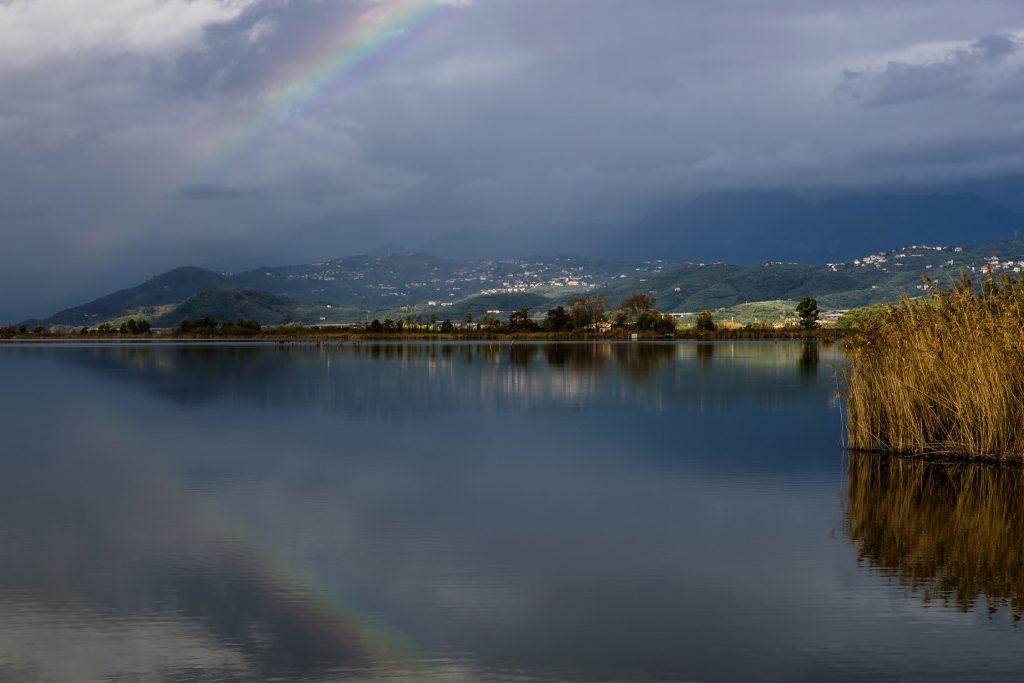 Lago Massaciuccoli